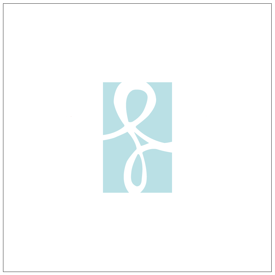 Jocelyn Filley Photography - logo
