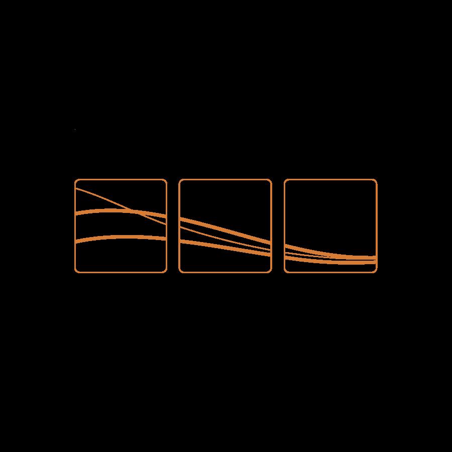 Susan Teare - logo
